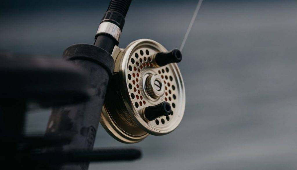Fishing Internet - Best Types of Fishing Reels in 2020.