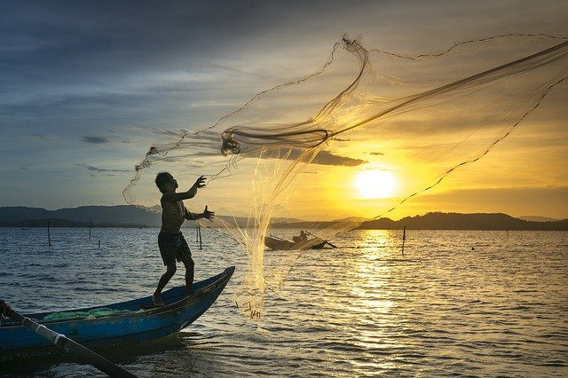 Best Commercial Fishing Nets