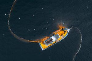sturgeon fishing oregon