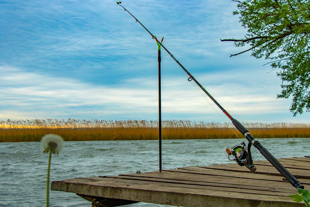 Fishing top 30 Fishing Tips for Beginners