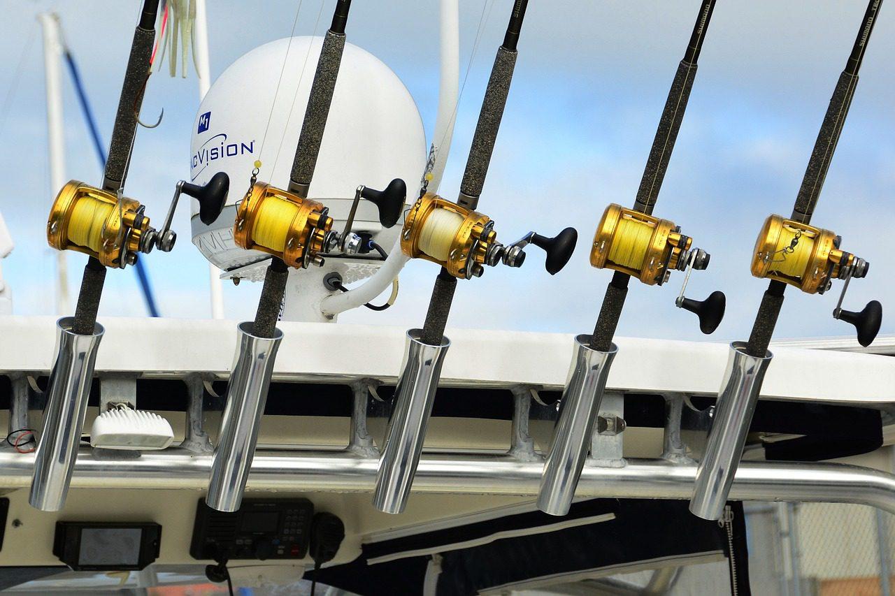 shimano baitcasting reels