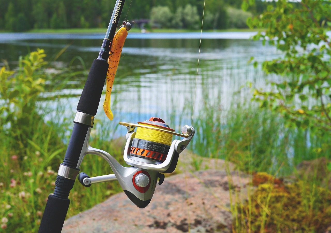 trout fishing near me